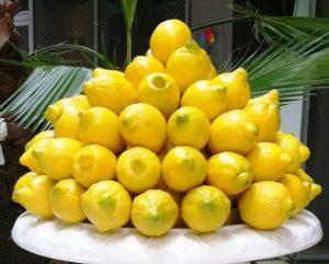limoni.2